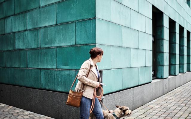 streetphotography streetfotografie streetlife düsseldorf hund 13